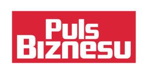 Puls Biznesu_Obszar roboczy 1
